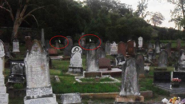 картинки призраков на кладбище.