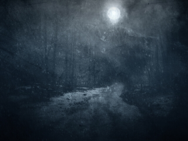полная луна в лесу