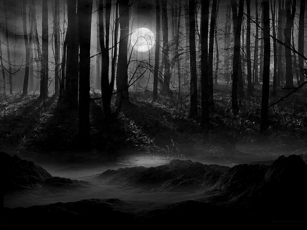 Полнолуние в лесу.