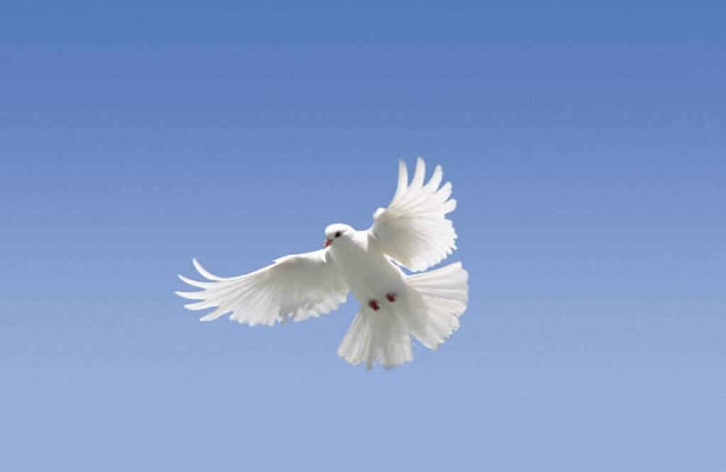 святого духа день